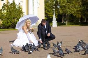 Фотограф на свадьбе Елены и Максима